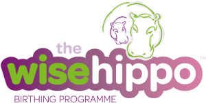 the-wise-hippo-wide-logo-1000x506